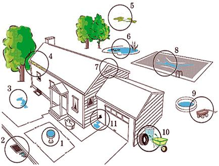 Drawing of residential home areas where mosquitoes can breed