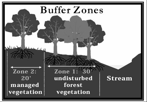 Buffer Zones graphic showing vegetation and zones