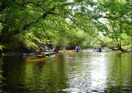 Members of the local chapter of the Sierra Club and County Staff paddle the creek