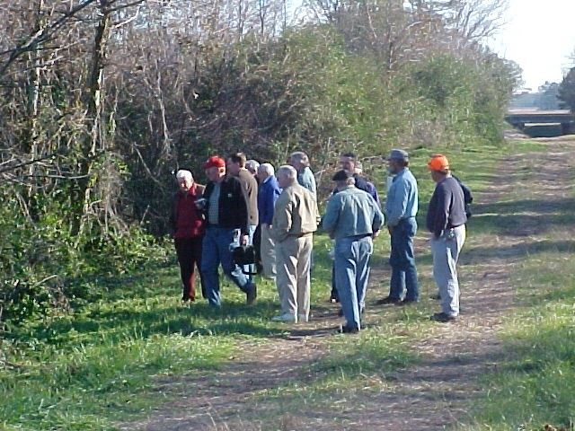 A group of people explore the woods from a trail